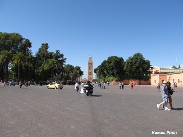 O Meu Zoom...de Marrocos, em 2014 - Página 2 IMG_5000_new_zps560a5082