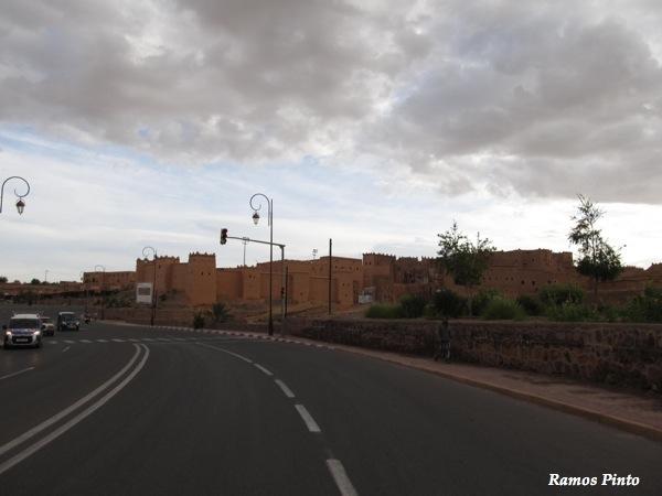 O Meu Zoom...de Marrocos, em 2014 - Página 2 IMG_5077_new_zps5a7dd447