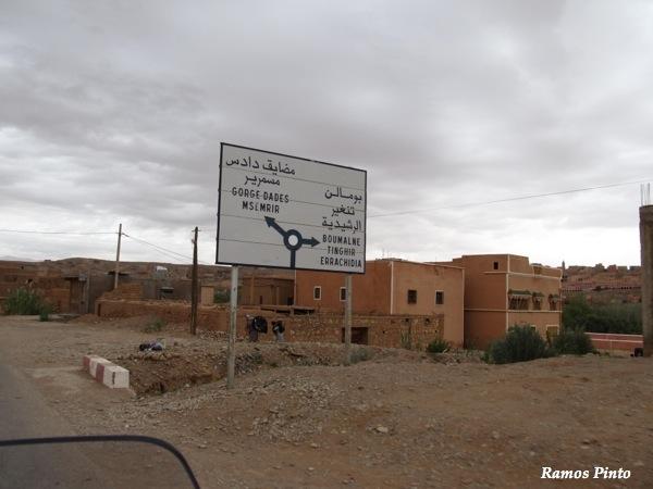 O Meu Zoom...de Marrocos, em 2014 - Página 2 IMG_5128_new_zps768ab274