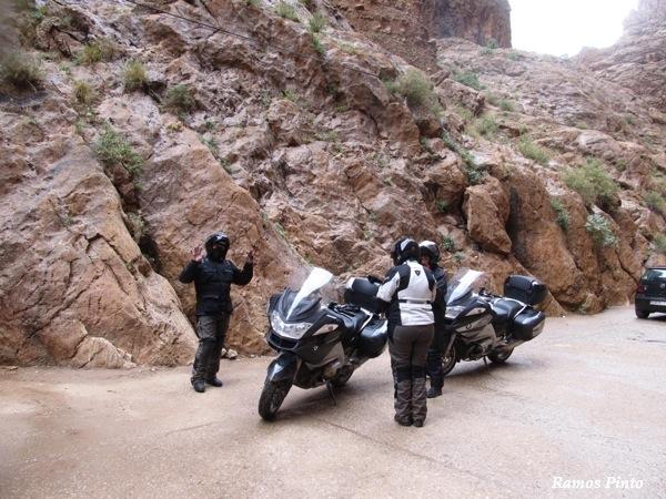 O Meu Zoom...de Marrocos, em 2014 - Página 2 IMG_5203_new_zps2a69d71d