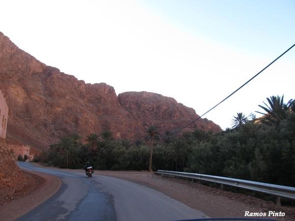 O Meu Zoom...de Marrocos, em 2014 - Página 2 IMG_5241_new_zps039e3f4c