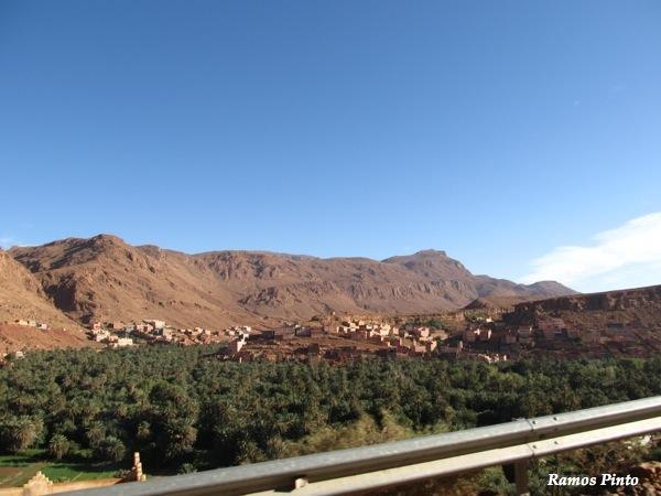 O Meu Zoom...de Marrocos, em 2014 - Página 2 IMG_5246_new_zpse7538b18