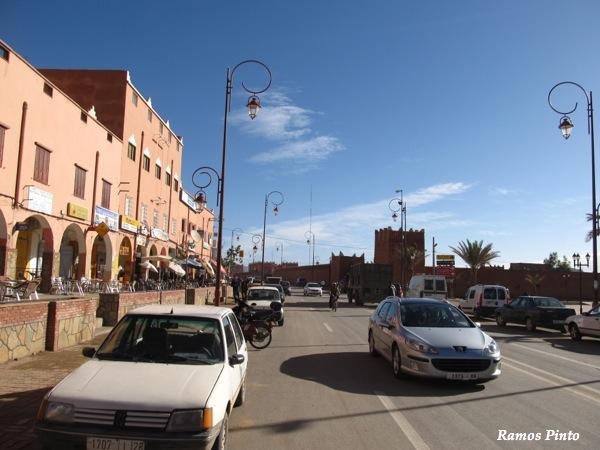 O Meu Zoom...de Marrocos, em 2014 - Página 2 IMG_5255_new_zps648238bd