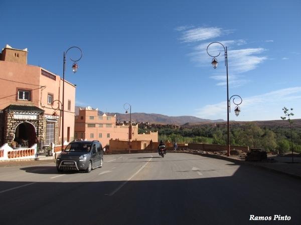 O Meu Zoom...de Marrocos, em 2014 - Página 2 IMG_5257_new_zps895835b2