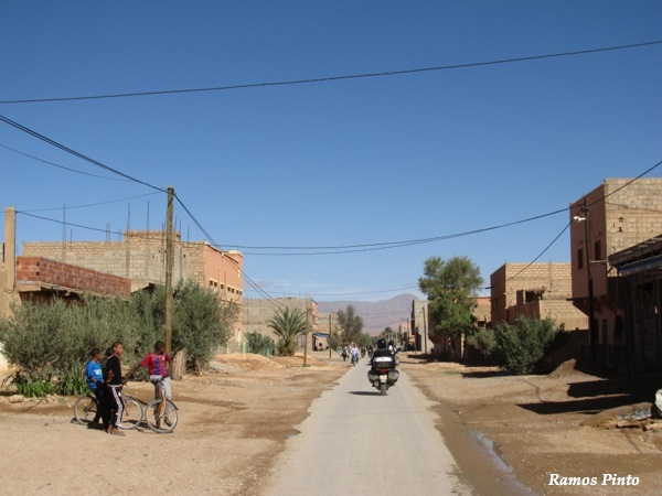 O Meu Zoom...de Marrocos, em 2014 - Página 2 IMG_5269_new_zps488b7b32