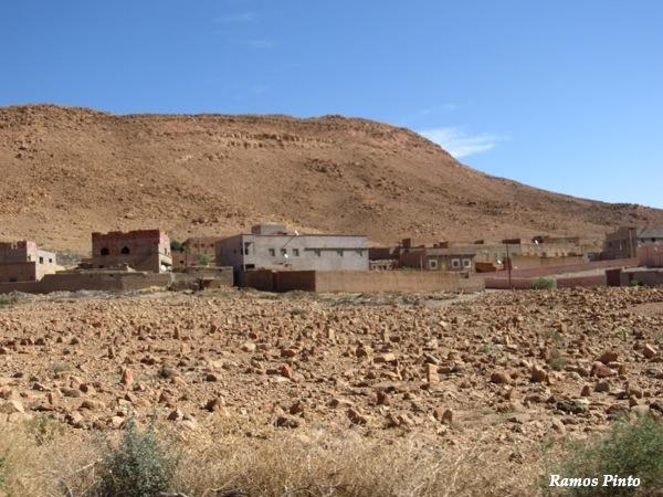 O Meu Zoom...de Marrocos, em 2014 - Página 2 IMG_5281_new_zps4b08331f