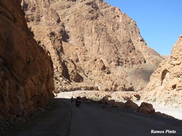 O Meu Zoom...de Marrocos, em 2014 - Página 2 IMG_5293_new_zps7d7a40b8