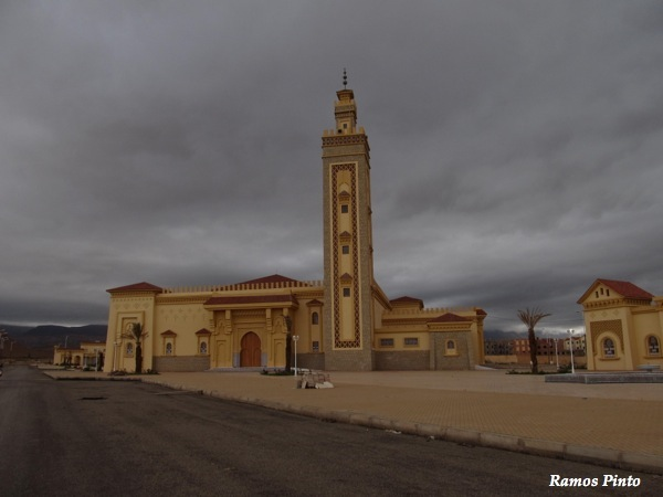 O Meu Zoom...de Marrocos, em 2014 - Página 2 IMG_5340_new_zps1b2ea797