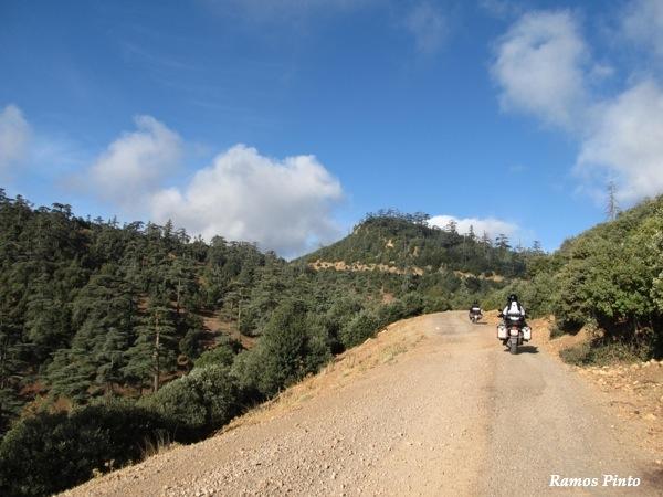 O Meu Zoom...de Marrocos, em 2014 - Página 2 IMG_5354_new_zps229e2b75