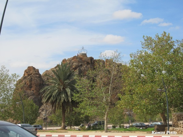 O Meu Zoom...de Marrocos, em 2014 - Página 2 IMG_5449_new_zps02cab346