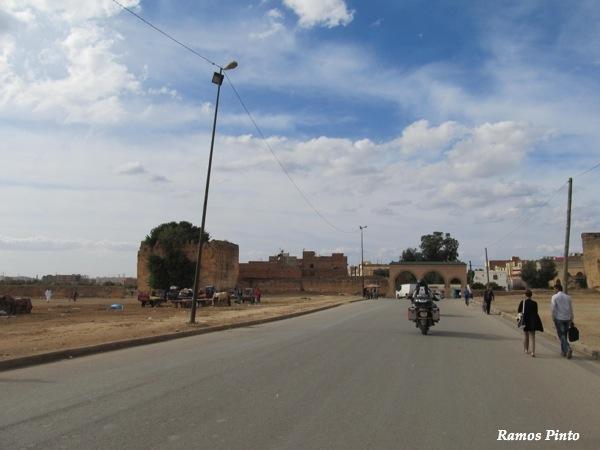 O Meu Zoom...de Marrocos, em 2014 - Página 2 IMG_5472_new_zpsbb4fac8c