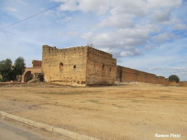 O Meu Zoom...de Marrocos, em 2014 - Página 2 IMG_5473_new_zps287b32a9