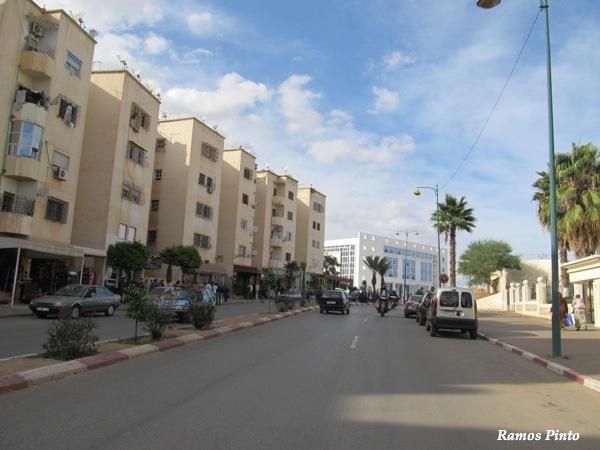 O Meu Zoom...de Marrocos, em 2014 - Página 2 IMG_5475_new_zps6bd30064