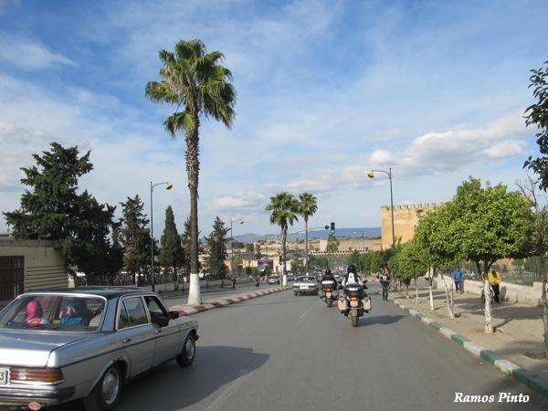 O Meu Zoom...de Marrocos, em 2014 - Página 2 IMG_5476_new_zps92c4f96a