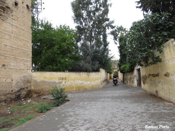 O Meu Zoom...de Marrocos, em 2014 - Página 2 IMG_5591_new_zps42ebca13