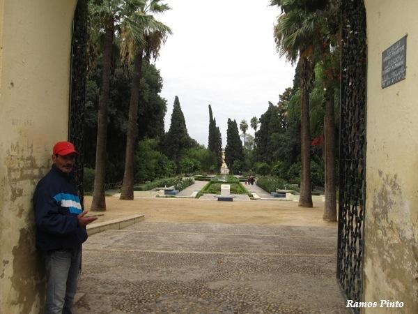 O Meu Zoom...de Marrocos, em 2014 - Página 2 IMG_5593_new_zps94e5d4c6