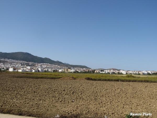 O Meu Zoom...de Marrocos, em 2014 - Página 2 IMG_5943_new_zps0ba6d668
