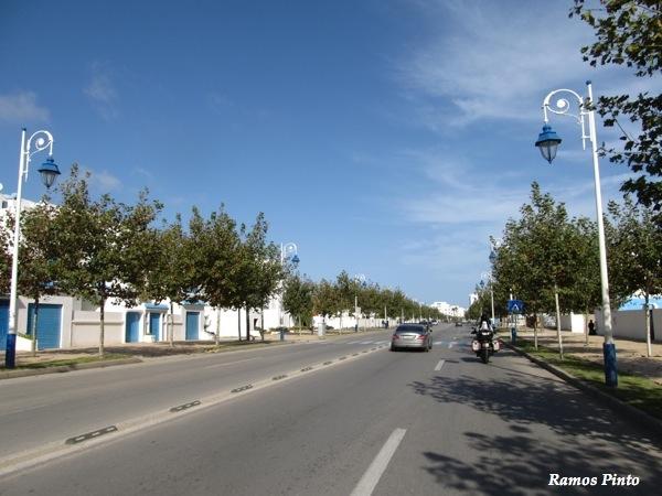O Meu Zoom...de Marrocos, em 2014 - Página 2 IMG_5947_new_zps80779f27