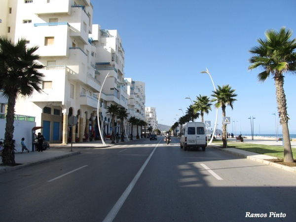 O Meu Zoom...de Marrocos, em 2014 - Página 2 IMG_5953_new_zps43f9773b