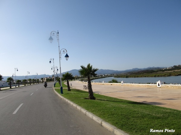 O Meu Zoom...de Marrocos, em 2014 - Página 2 IMG_5955_new_zps3f0011b4