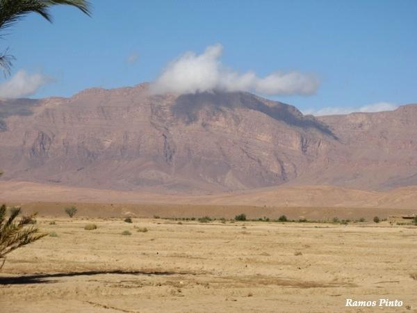 O Meu Zoom...de Marrocos, em 2014 - Página 2 A9a441a1-8299-4aa3-b1b2-db5d488bab71_zps5d18e726