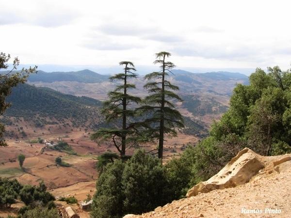 O Meu Zoom...de Marrocos, em 2014 - Página 2 Af6846d3-f1f3-43b5-b868-ea386c100446_zpsfda63c2a
