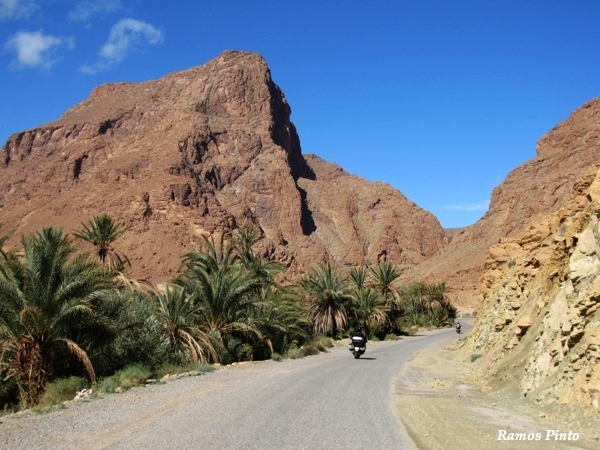 O Meu Zoom...de Marrocos, em 2014 - Página 2 B048f042-f8a8-4c77-8c81-9808115d7470_zpsb31c235d