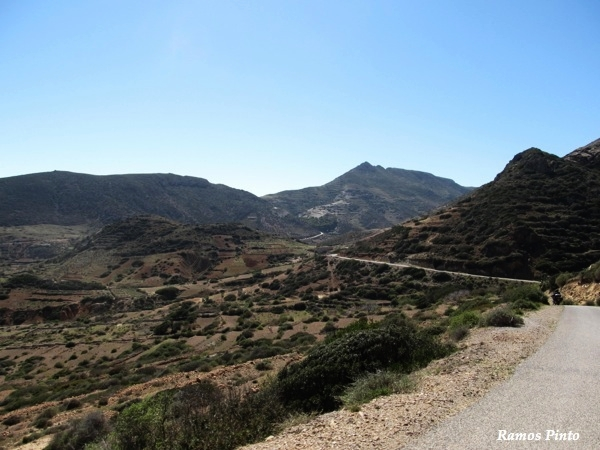 O Meu Zoom...de Marrocos, em 2014 - Página 2 B4094982-0c30-4cb8-8d6d-c43a2fd220e8_zps495bdb9a