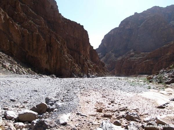 O Meu Zoom...de Marrocos, em 2014 - Página 2 B54bc15c-e0c3-4e02-8f52-55ec0eaf857f_zps2178b546