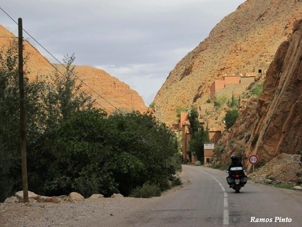 O Meu Zoom...de Marrocos, em 2014 - Página 2 B6836013-3749-4a3d-84e8-eae2cabc91a4_zps7dbfd5c3