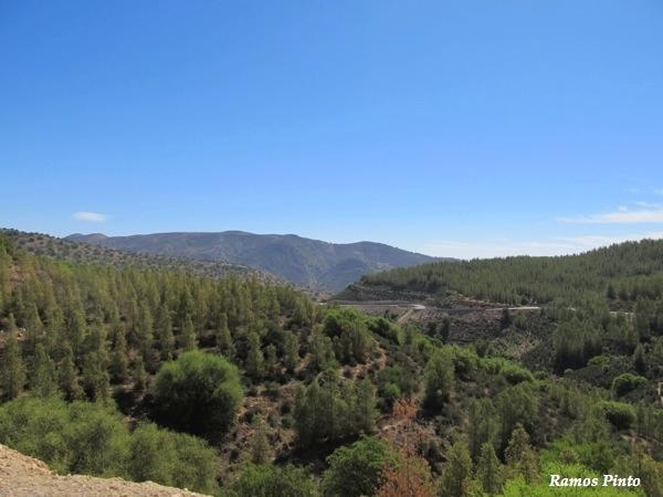 O Meu Zoom...de Marrocos, em 2014 - Página 2 B85e7114-2a81-43ef-8aa8-b8b0d62a7f63_zps1fcb5fbd