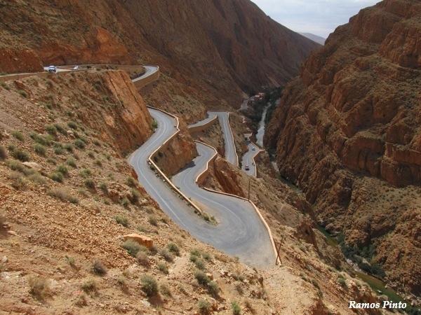 O Meu Zoom...de Marrocos, em 2014 - Página 2 B90a7720-8d0c-4fac-9635-0abd2827c38d_zps8d090155
