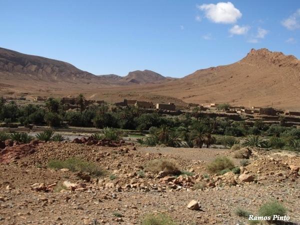 O Meu Zoom...de Marrocos, em 2014 - Página 2 C184b3a5-7074-471c-9bb6-ef4728eb41ec_zps23eacd23