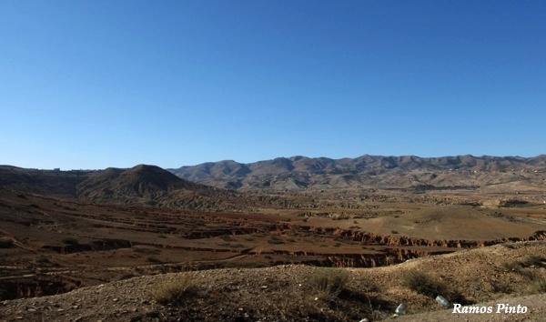 O Meu Zoom...de Marrocos, em 2014 - Página 2 C1d3cd7d-d1b2-44dc-afcf-0072ec53fccf_zpsffeb4861