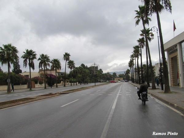 O Meu Zoom...de Marrocos, em 2014 - Página 2 Ca624aa3-1cb7-44ea-a554-ce32ab7b2235_zps6ca43b9e