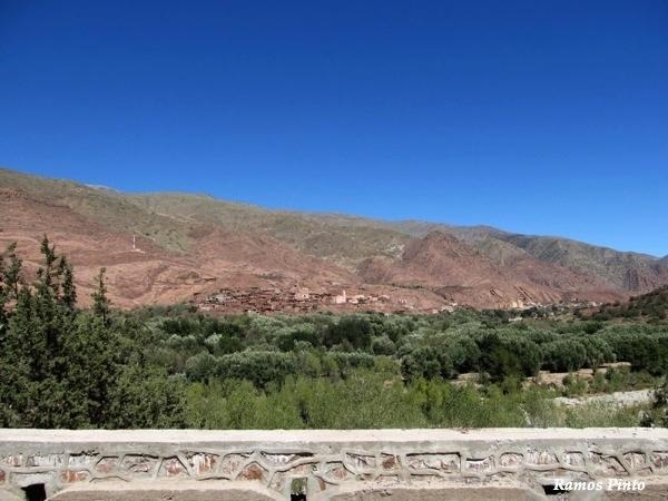 O Meu Zoom...de Marrocos, em 2014 - Página 2 Cf15b128-cee1-4289-8479-fba99dc24bbb_zpsc00d1e6b