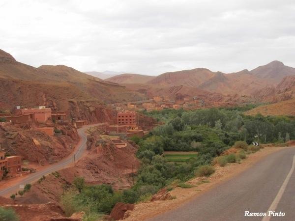 O Meu Zoom...de Marrocos, em 2014 - Página 2 Cfa74161-b3e6-41b4-bf9e-132816203d02_zps9519693c