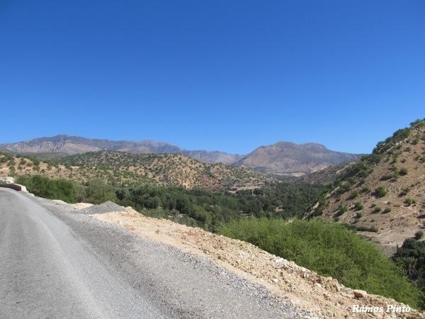 O Meu Zoom...de Marrocos, em 2014 - Página 2 D200bdaf-ab3f-434f-87af-c0f65c23e702_zpsc8082df0