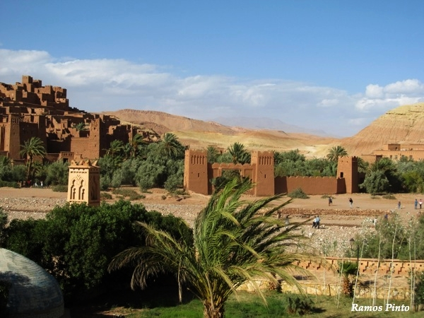 O Meu Zoom...de Marrocos, em 2014 - Página 2 D5739bb6-ed3b-4669-993a-758a96afbc84_zps97a4fb7d