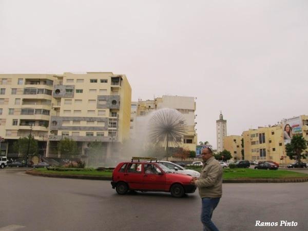 O Meu Zoom...de Marrocos, em 2014 - Página 2 D7a26ed9-351b-4fbc-8e20-4b7978c88a57_zps1612ab3a