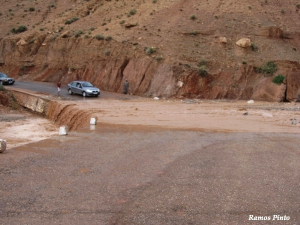 O Meu Zoom...de Marrocos, em 2014 - Página 2 D9dbd94f-a375-42a7-b7e1-f38928fd4ed3_zps89ef19a6