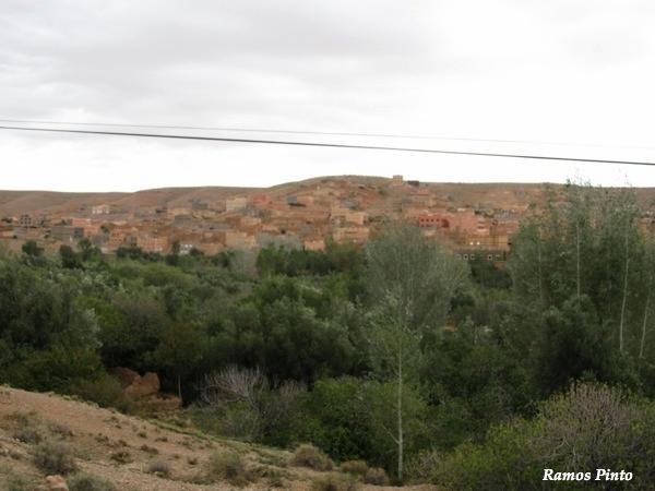 O Meu Zoom...de Marrocos, em 2014 - Página 2 Dffbac7d-883c-4321-bb0b-3d74c4e09360_zpsc63e326d