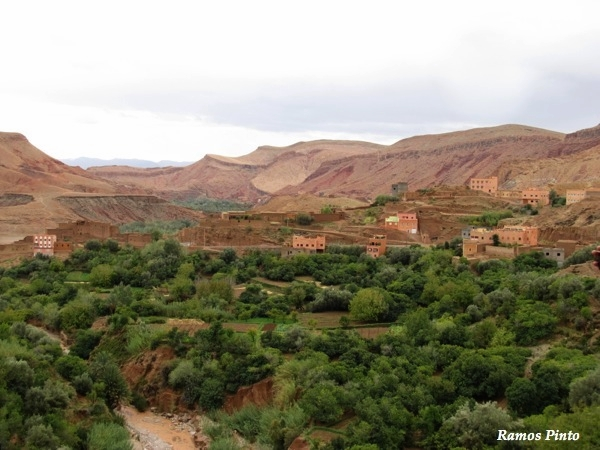 O Meu Zoom...de Marrocos, em 2014 - Página 2 E1cf3fcd-b4c3-4172-97a5-f54630c73f3d_zps05435489