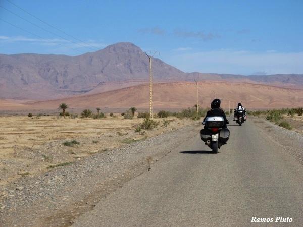 O Meu Zoom...de Marrocos, em 2014 - Página 2 E3aabbb9-8b8c-40d9-a344-151ed0a5561e_zps63ac1faf