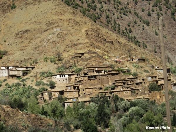 O Meu Zoom...de Marrocos, em 2014 - Página 2 F0673eb8-4f95-4602-ac2e-c8ffbb928a26_zps6a34b1c7