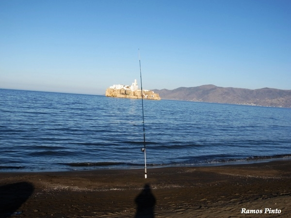 O Meu Zoom...de Marrocos, em 2014 - Página 2 Fa2fb322-e801-4014-98f2-2a2e1a429096_zps683a7008