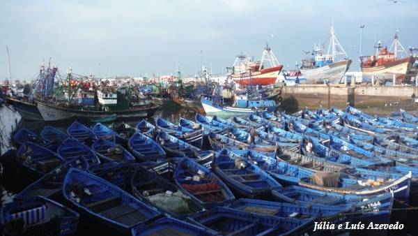 marrocos - O Meu Zoom...de Marrocos, em 2014 DSCF1365_new_zps66fc2b6e
