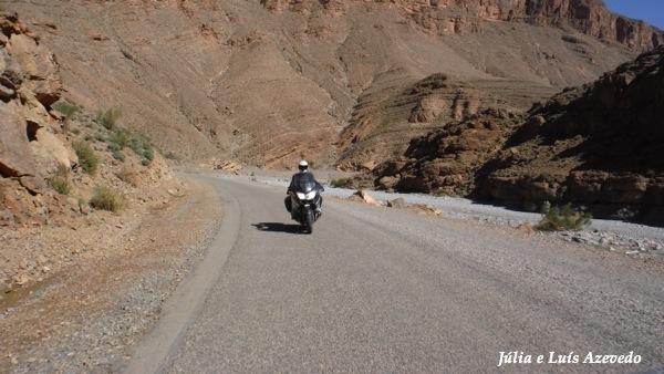 O Meu Zoom...de Marrocos, em 2014 - Página 2 DSCF2757_new_zps8d7b8172