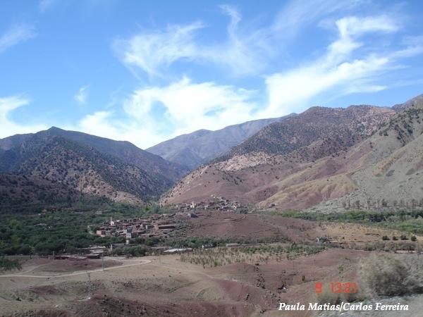 O Meu Zoom...de Marrocos, em 2014 - Página 2 DSC03511_new_zpsf028e1bc