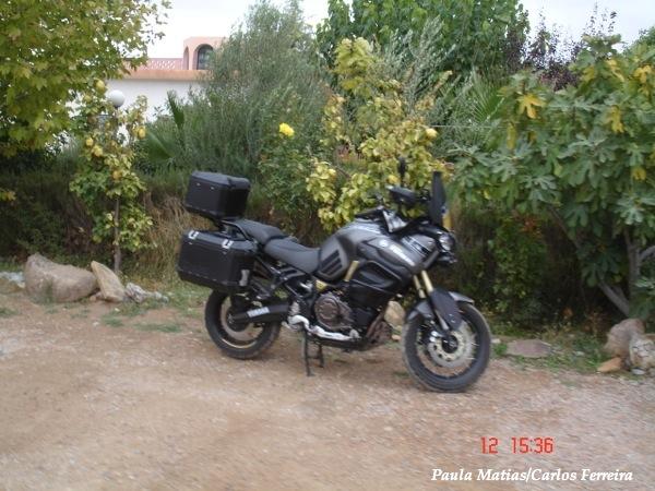 O Meu Zoom...de Marrocos, em 2014 - Página 2 DSC03876_new_zpse75841e9